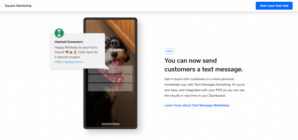 Square email marketing
